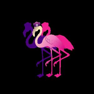 Flamingo Studium Abschluss JGA Arzt Doktor cool