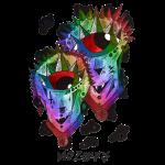 Gemeaux multi-color