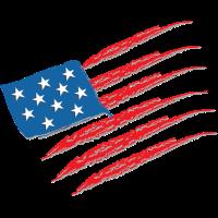 USA Flagge Kratzer