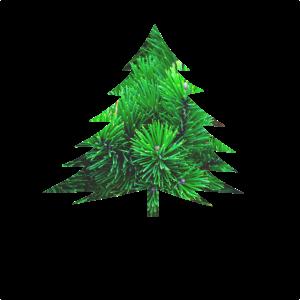Tannenbaum Weihnachtsbaum Nadelbaum
