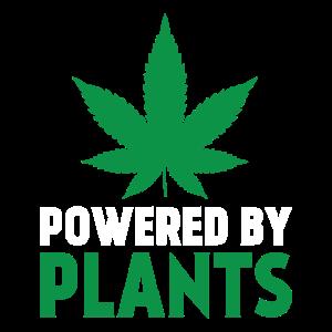 Angetrieben durch Pflanzen
