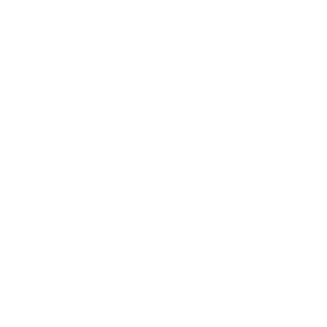 Alles Maeuse