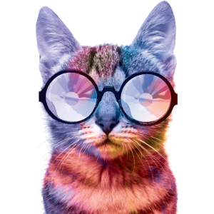 Rave Cat Farbige Katze Brille