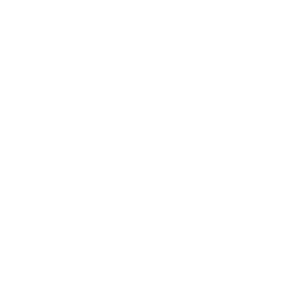 Palmen Sonne Sommer Meer Strand Ferien Urlaub frei