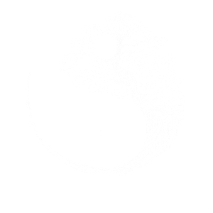 Yin Yang Bonsai Baum Japan Buddha Zen Geschenk