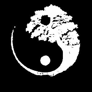 Yin Yang Bonsai Baum Japan Buddha Zen Fun Geschenk