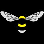 Bombus lucorum final