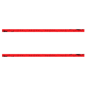 FVCK THE SYSTEM