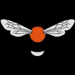 Bombus hypnorum final