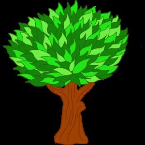 Baum Fruehling