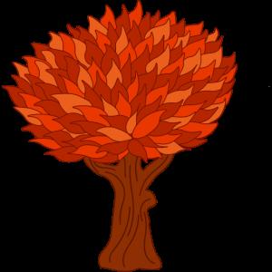 Baum orange