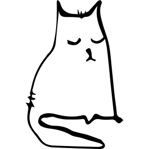 sad cat