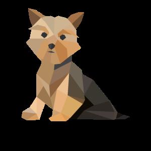 Yorkie Hund Polygon Dog Yorkshire