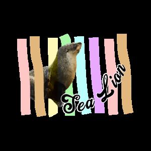 Seelöwe - Meeresbewohner