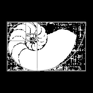 Mathematik fibonacci, der Goldene Schnitt