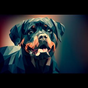 Poster Hund Rottweiler