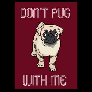 Hund Mops pug