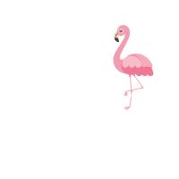Zeig den Flamingo in dir