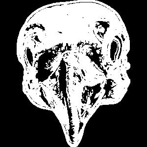 Rabenschädel Knochen Vogel Geschenkidee Gothik