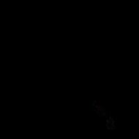 dunkler Oktopus