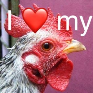 I love my cock