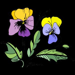 Bouquet von Stiefmütterchen
