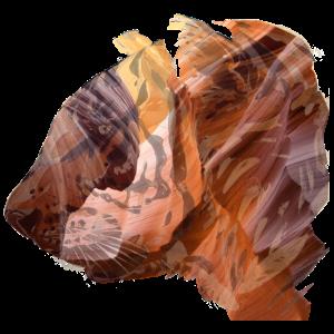 Tiger Grafik Doppelbelichtung-Effekt Geschenkidee