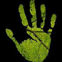 Hand Natur
