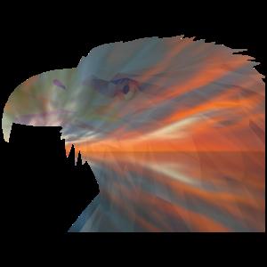 Adler Grafik Doppelbelichtung-Effekt Geschenkidee