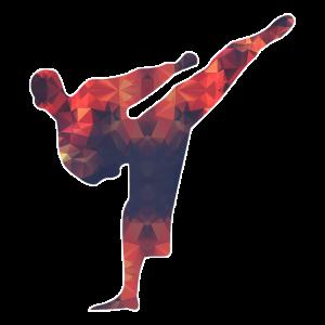 Karatekämpfer / Kung-Fu