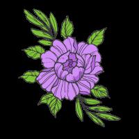 Blume Lila violett