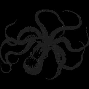 kraken-v10 [Konvertiert]