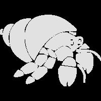 Krabbe Krebs Hummer Muschel Meerestier
