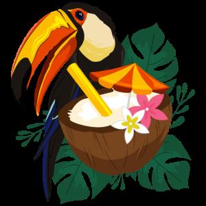 Hawaii Sommer Pelikan