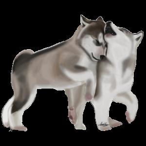 Cute Baby Wolfs