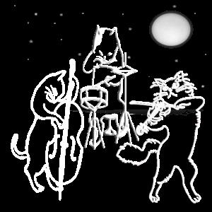 Lustige Katzen Mondschein