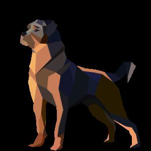 Hund Rottweiler Vektor