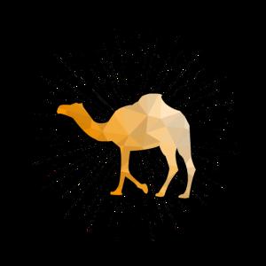 Kamel Dromedar Afrika Tiere Wueste Geschenk