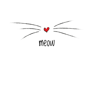 Miau Meow Miaow Katze