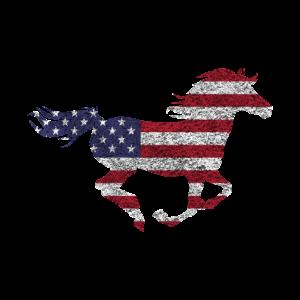 Amerikanisches Pferd