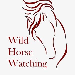 Logo Aveto Wild Horses