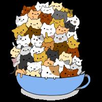 Kätzchen Schüssel