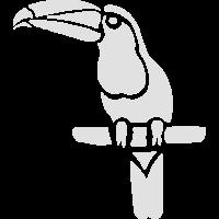 Tukan Specht Vogel Tropen tropisch Geschenk