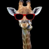 Giraffen T-Shirt Tier Giraffe witzig Hals Geschenk