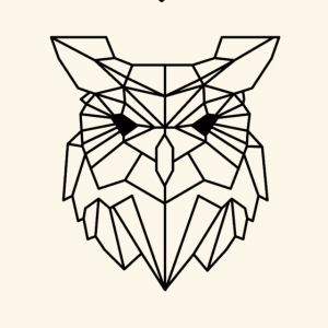 Animal Collection: The Owl