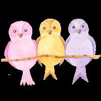 Vögel Aquarell