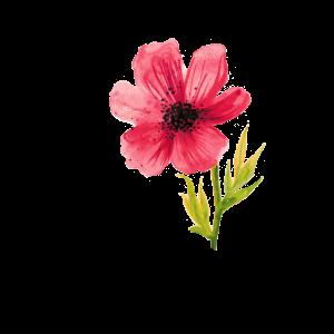 Blume watercolor Blumenranke Frau Alpen Kräuter