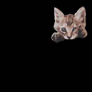Katzen Katzendame Katzenfreund Katzengesicht