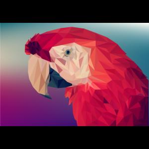 Papagei Modern Geschenk Geschenkidee