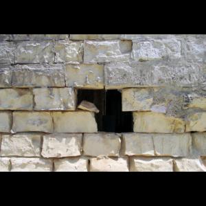 Wall XVI
